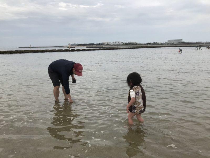 大阪「二色浜」で潮干狩り